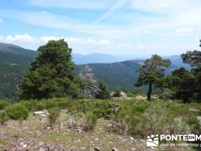 Camino viejo del Paular - Valle de la Angostura - asociación de senderismo Alcobendas